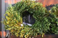 wreath-boxwood