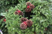 wreath-pinecone